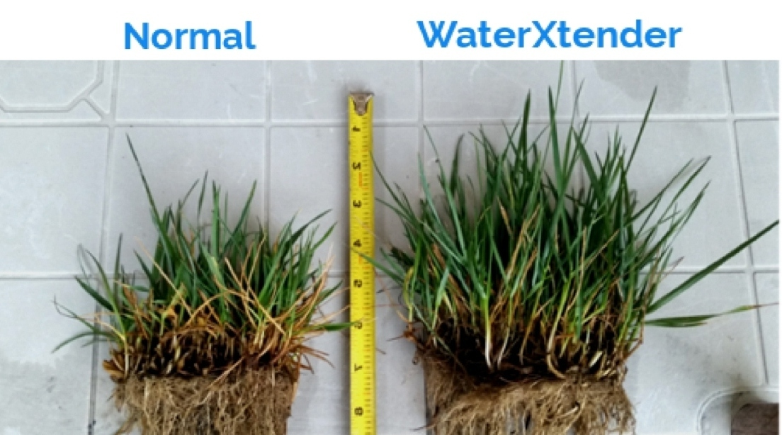 Normal WaterXtender 2 Grass