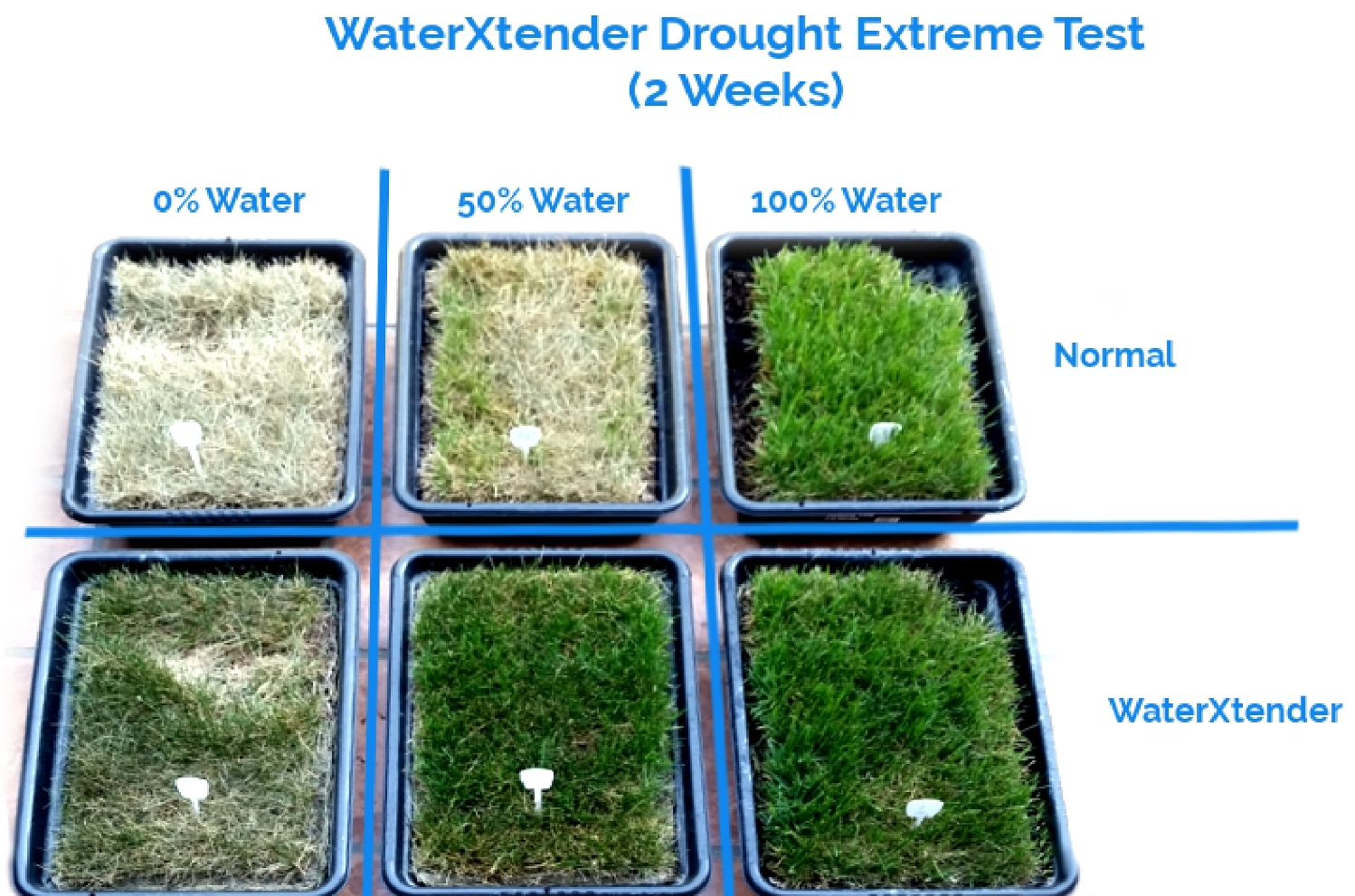 WaterXtender 6 Grass Samples Normal WaterXtender